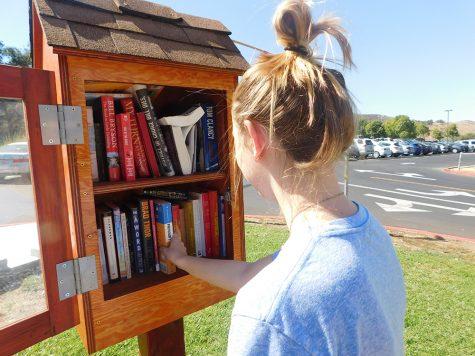 Book sharing libraries open across Oak Park