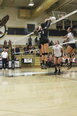 Natasha Rybakov leads girls' volleyball toward CIF