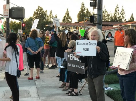 Activist groups advocate stricter gun control at protest, vigil