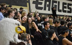 Birdcage Cheers Basketball Teams to Victory