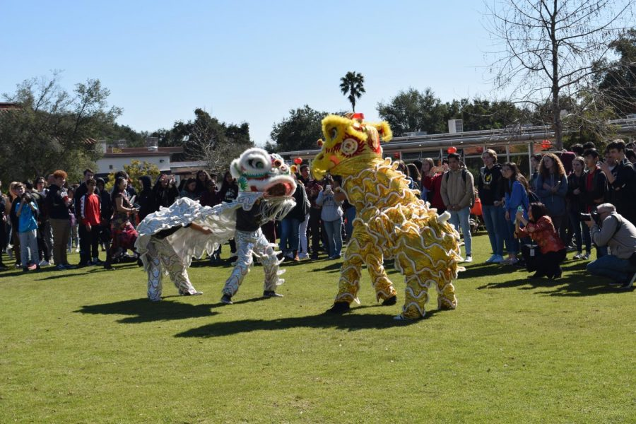 Students+perform+a+traditional+Chinese+lion+dance+for+OPHS+to+emerse+more+about+Chinese+culture