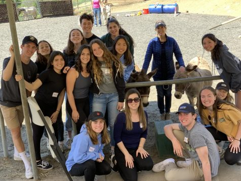 Advanced Peer Counselors learn about equine therapy