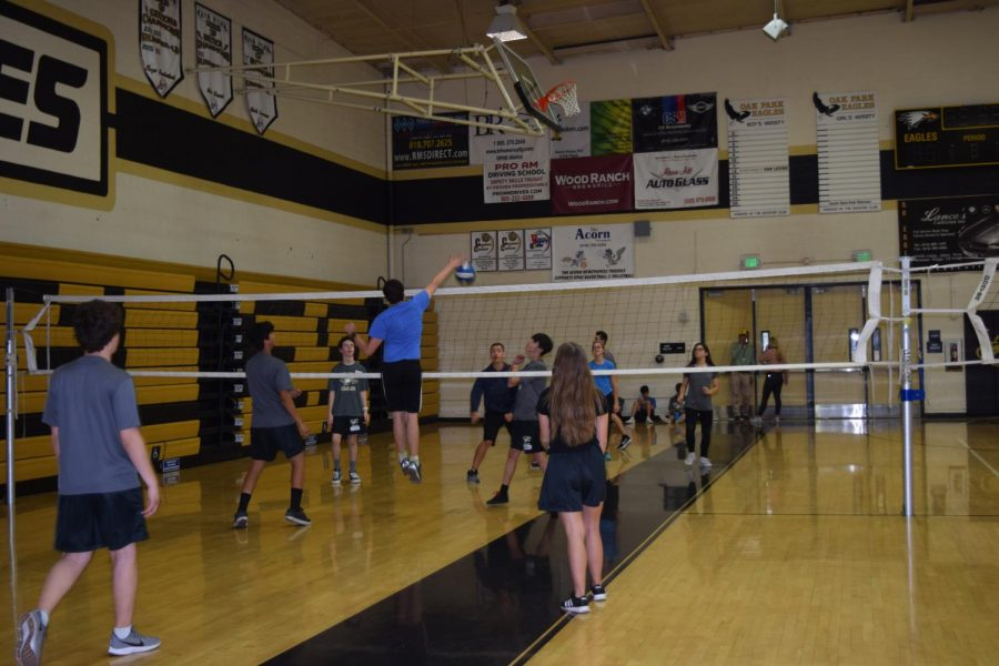 Students+participate+in+a+volleyball+game+during+their+PE+classes.+