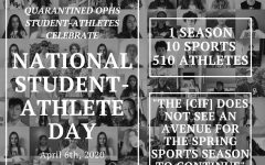 Oak Park athletes honor National Student-Athlete Day in quarantine